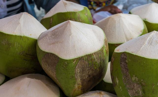 Jak otworzyć młodego kokosa?