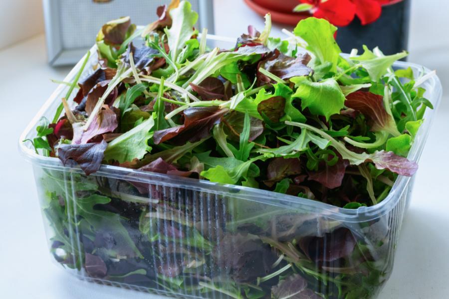 Pakowana sałata
