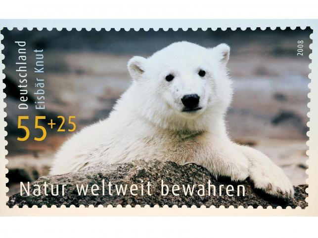 W 2008 roku wizerunek misia Knuta znalazł się na znaczkach pocztowych
