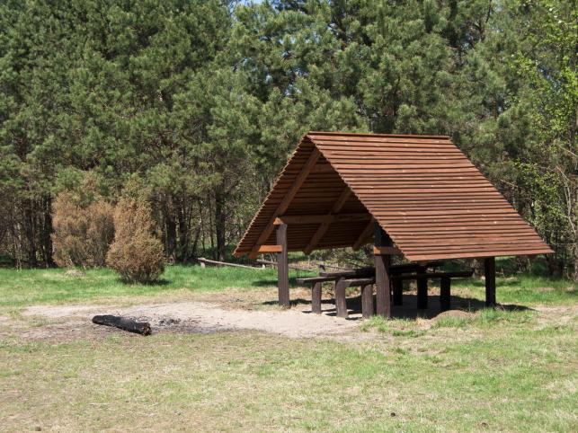 Kampinos - park narodowy