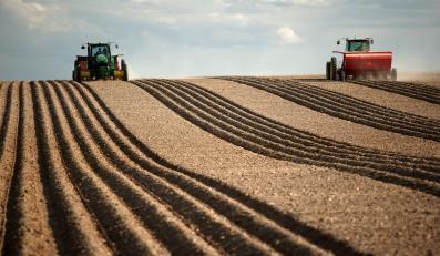Rolnictwo - zdjęcie ilusracyjne