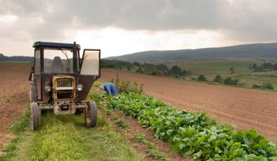 Traktor na polu - zdjęcie ilustracyjne