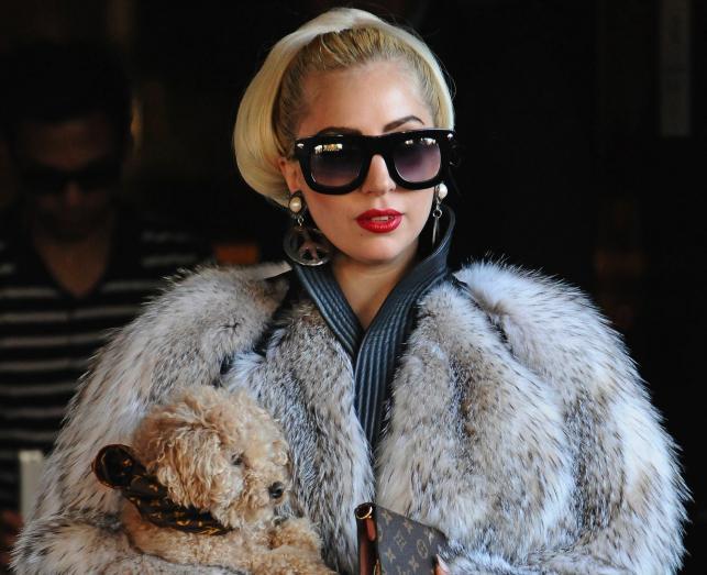 Lady Gaga stworzyła playlistę dla serwisu WiMP