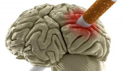 Papierosy rujnują mózg