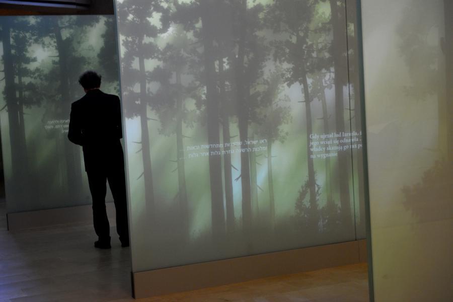 Prezentacja galerii \