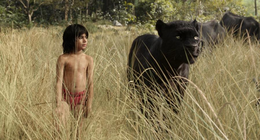 """Zobacz pierwszy trailer nowej """"Księgi dżungli"""""""