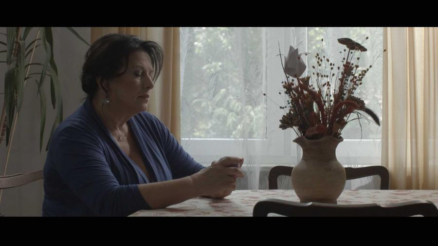 """Marzena Trybała w filmie """"Kolekcja sukienek"""" - obraz w kinach od 9 grudnia 2016 roku"""